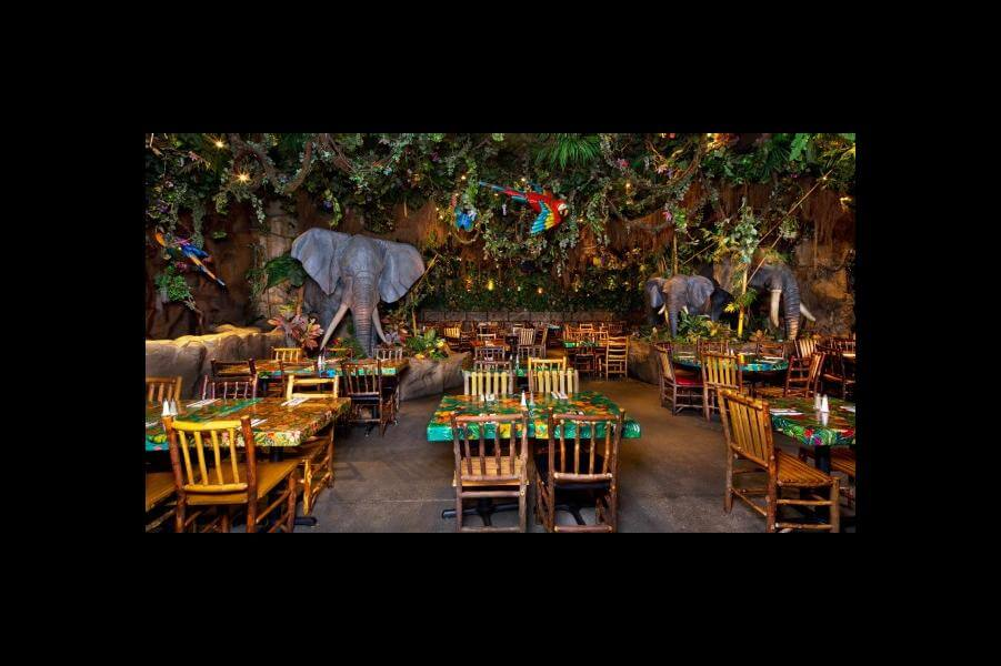 Rainforest Cafe® at Disney Springs Marketplace